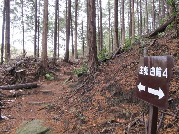 松平城だよ6.JPG