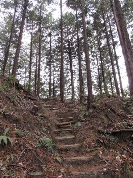 松平城だよ7.JPG