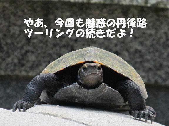 IMG_7069-1_R3.jpg